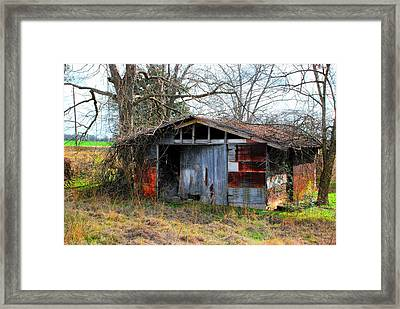 Old Shed 19 Framed Print by Andy Savelle