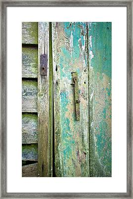 Old Shed Door Framed Print by Tom Gowanlock