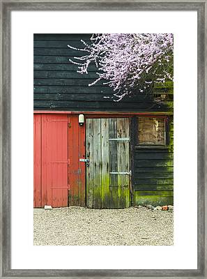 Old Shed Framed Print by Svetlana Sewell