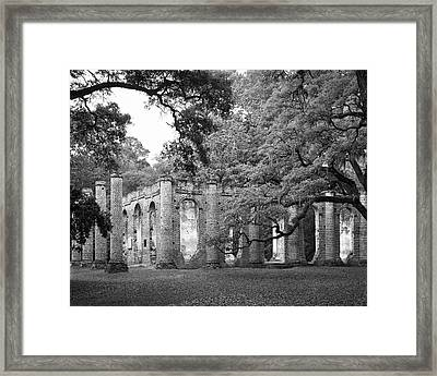 Old Sheldon Church - Black And White Framed Print