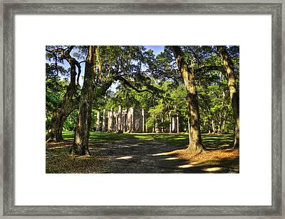 Old Sheldon Church Ruins 7 Framed Print by Reid Callaway