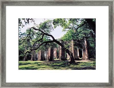 Old Sheldon Church Ruins Framed Print by Debbie Bailey