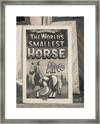 Old Sideshow Poster Framed Print by Edward Fielding