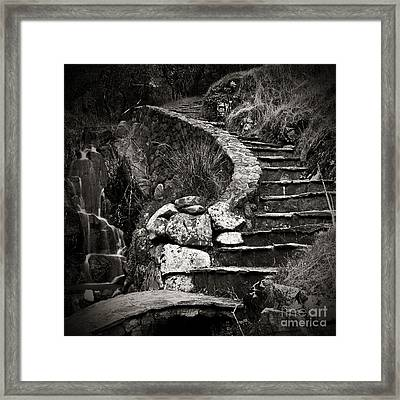 Old Stone Stairway Framed Print by Charmian Vistaunet