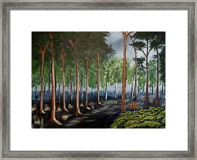 Old Timber Road Framed Print by Zeke Nord
