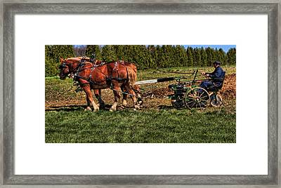 Old Time Horse Plowing Framed Print by Dan Sproul