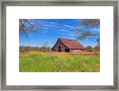 Old Tin Roofed Barn In Spring - Rural Georgia Framed Print