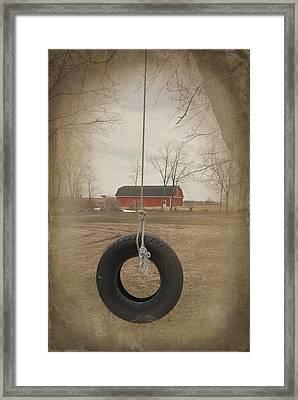 Old Tire Swing Framed Print