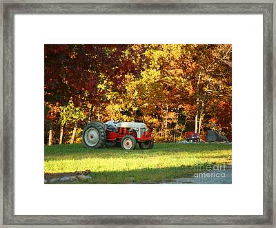 Old Tractor In A Carolina Fall Framed Print by Suzi Nelson