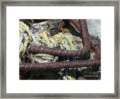 Framed Print featuring the photograph Old Trap Close-up by Minnie Lippiatt