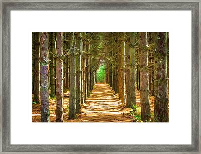 Old Tree Farm Smoky Mountains Painted   Framed Print by Rich Franco