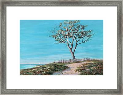 Old Tree In Carpenteria Framed Print by Tina Obrien