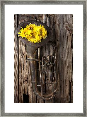 Old Tuba And Yellow Mums Framed Print by Garry Gay