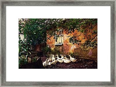 Old Ukrainian Village Framed Print by Julie Palencia