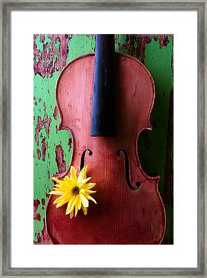 Old Violin Against Green Wall Framed Print by Garry Gay