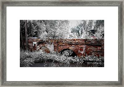 Framed Print featuring the pyrography Old Wall by Evgeniy Lankin