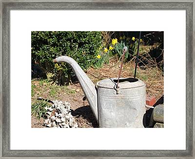 Old Watering Can Framed Print by Carolyn Ricks