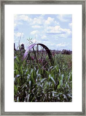 Old Wheel  Framed Print by Joann Copeland-Paul