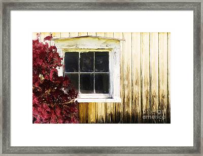 Old White Window Framed Print by Martin Dzurjanik