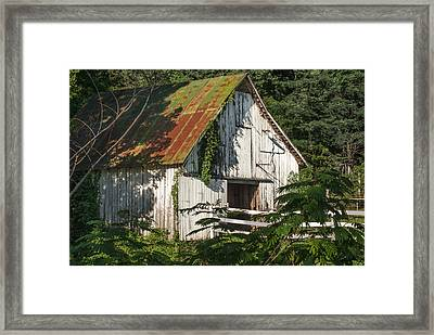 Old Whitewashed Barn In Tennessee Framed Print