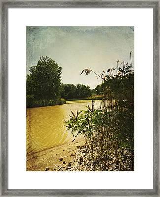 Old Woman Creek  Framed Print