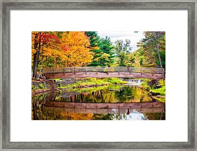Ole Bull State Park Paint Framed Print by Steve Harrington