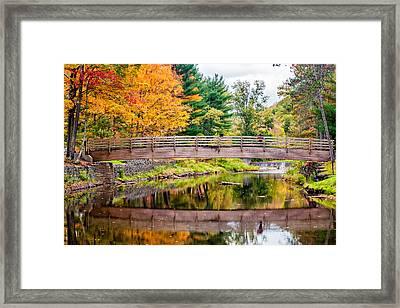 Ole Bull State Park Framed Print by Steve Harrington