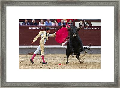 Framed Print featuring the photograph Ole by Nathan Rupert