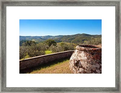 Olive Groves, Greve In Chianti Framed Print by Nico Tondini