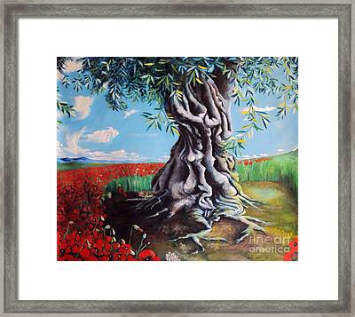 Olive Tree In A Sea Of Poppies Framed Print by Alessandra Andrisani