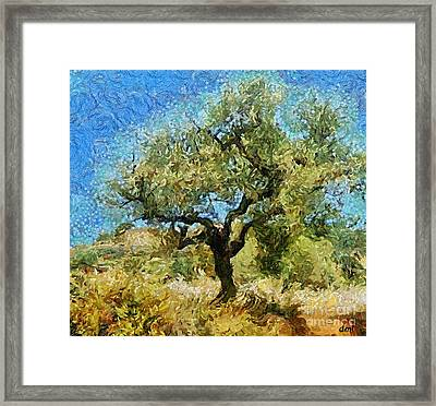 Olive Tree On Van Gogh Manner Framed Print