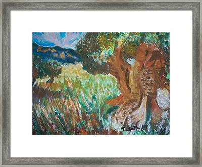 Framed Print featuring the painting Olive Trees by Teresa White