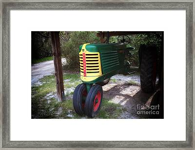 Oliver Framed Print by John Rizzuto