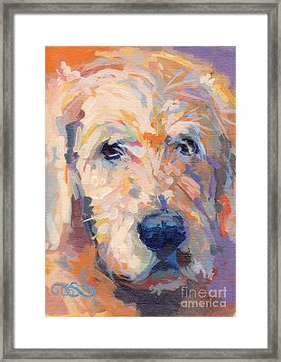 Oliver Framed Print by Kimberly Santini