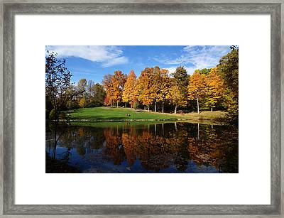 Oliver Winery 2014 Framed Print by Chuck Johnson