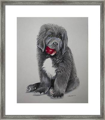 Oliver's Red Ball Framed Print