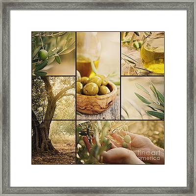 Olives Collage Framed Print by Mythja  Photography