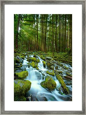 Olympic Green Framed Print by Dan Mihai