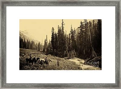 Olympic National Park Horse Packing Framed Print