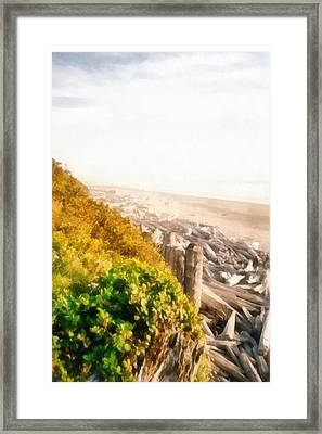 Olympic Peninsula Driftwood Framed Print by Michelle Calkins