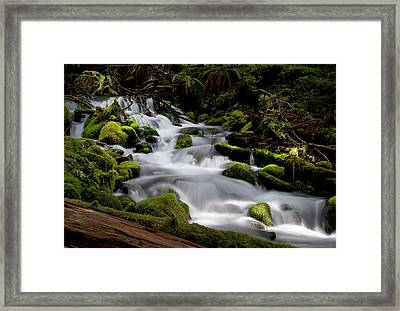 Framed Print featuring the photograph Olympic Spring by Art Shimamura