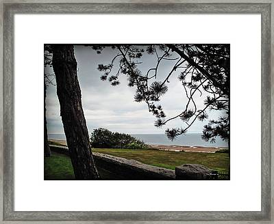 Omaha Beach Under Trees Framed Print by Joan  Minchak