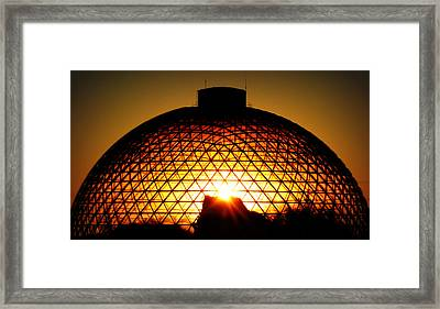 Omaha Henry Doorly Zoo Framed Print