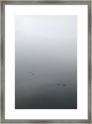 Framed Print featuring the photograph Ombre by Colleen Williams
