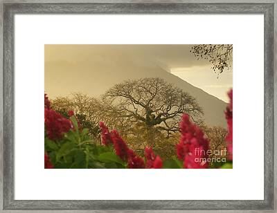 Framed Print featuring the photograph Ometepe Island 2 by Rudi Prott