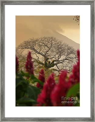 Ometepe Island Nicaragua 4 Framed Print