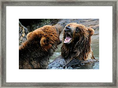 OMG Framed Print by Diana Angstadt