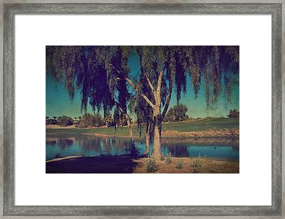 On A Lazy Afternoon Framed Print by Laurie Search
