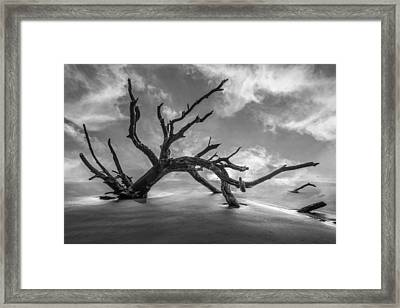 On A Misty Morning In Black And White Framed Print by Debra and Dave Vanderlaan