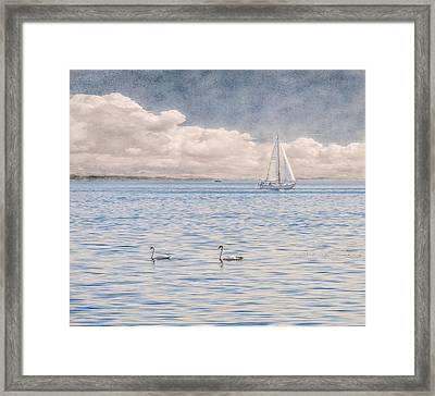 On A Summer's Breeze Framed Print